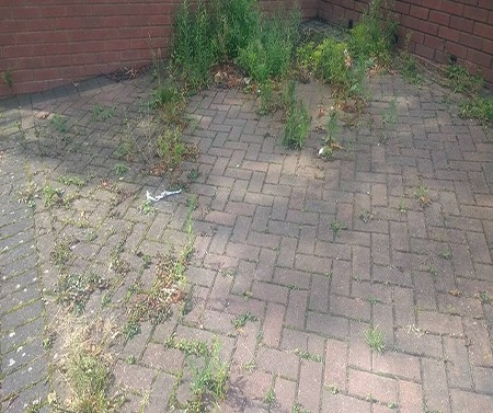 Driveway Cleaning in Solihull before